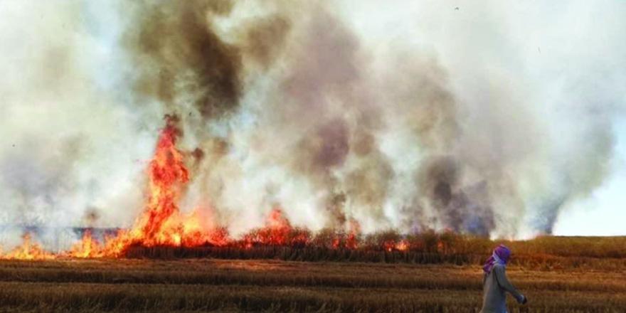 YPG/PKK sivillerin tarım arazilerini yaktı