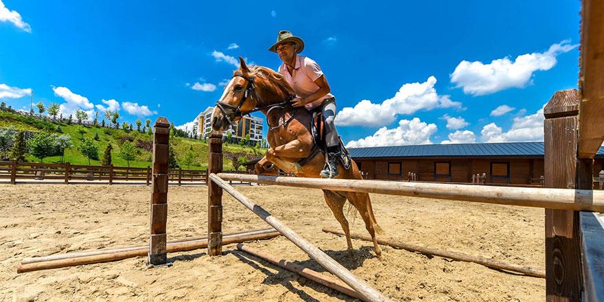 Altınköy'e at çiftliği kuruldu