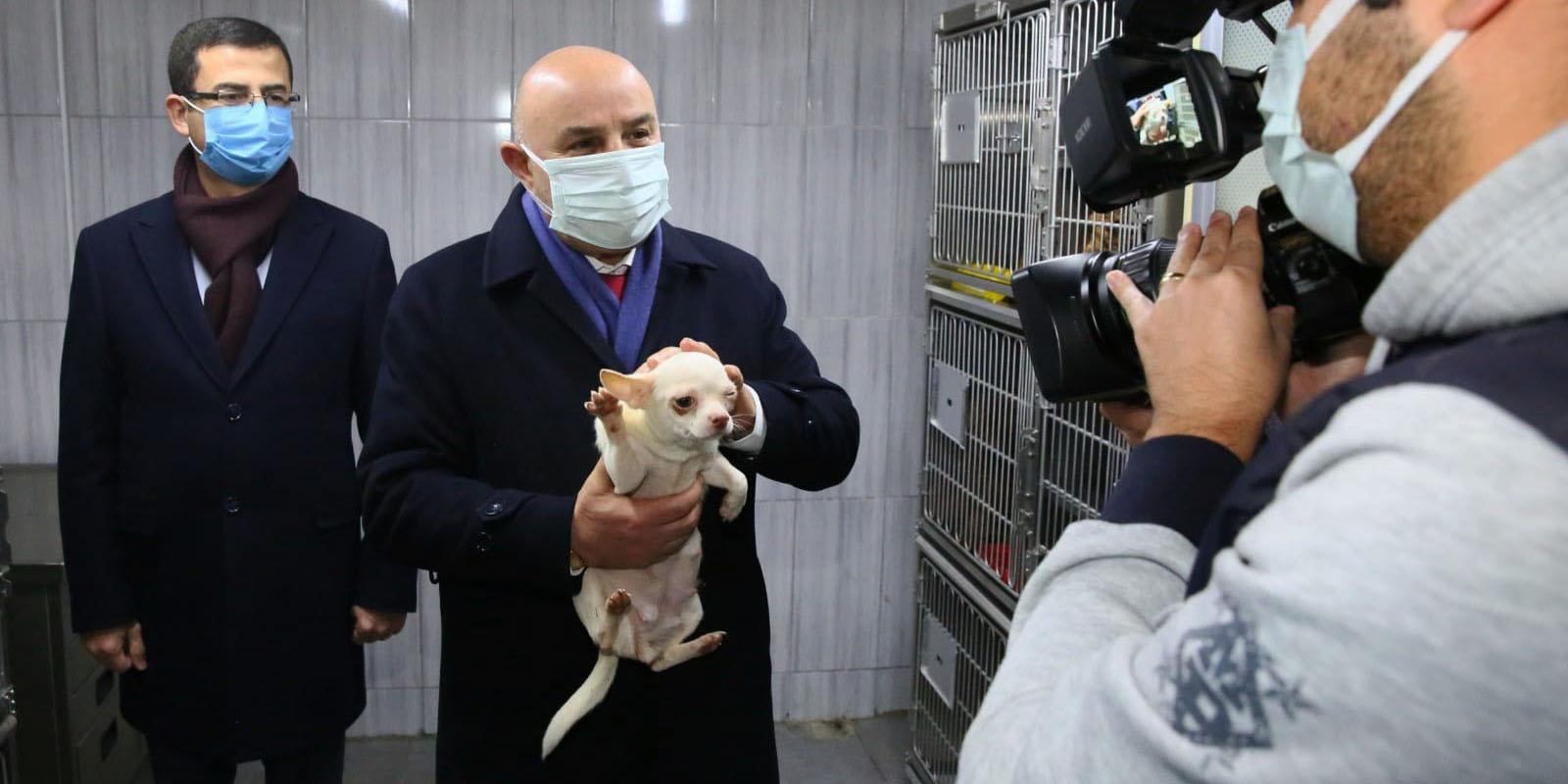 """Başkan Altınok: """"Köpekler şu anda emin ellerde"""""""