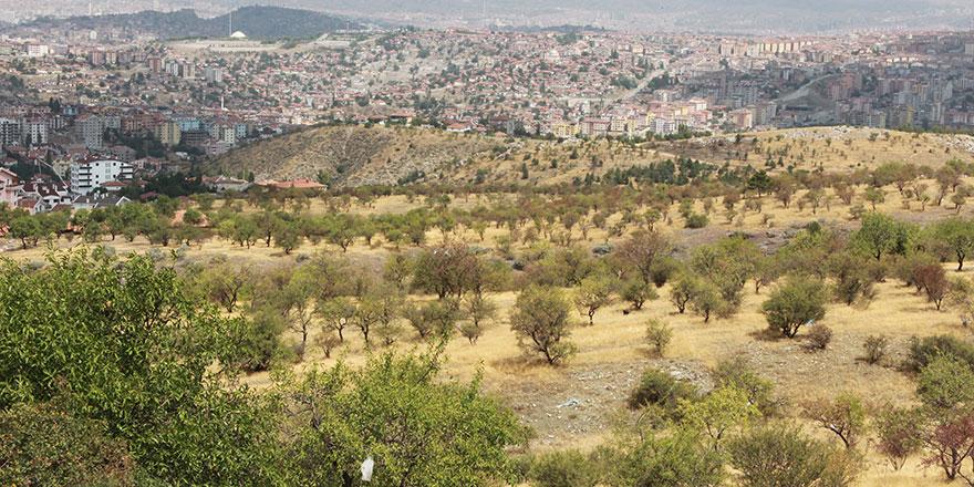 Ankara'ya yeni nefes