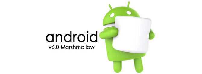 Android'de Java'nın Yerini Apple'ın Swift'i Alabilir