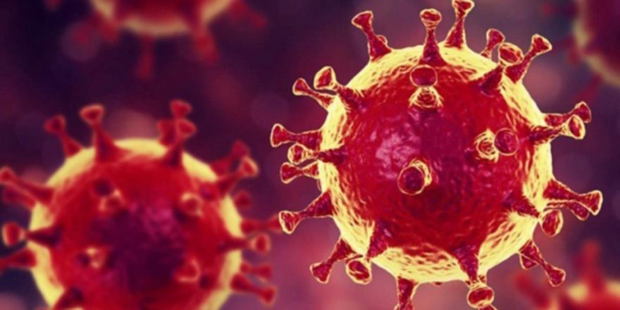 Korona virüste korkutan tablo