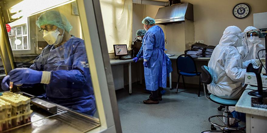 Korona virüsten 339 kişi hayatını kaybetti