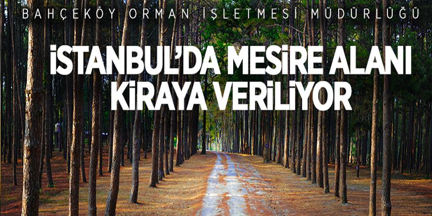 İstanbul'da mesire yeri kiraya verilecek