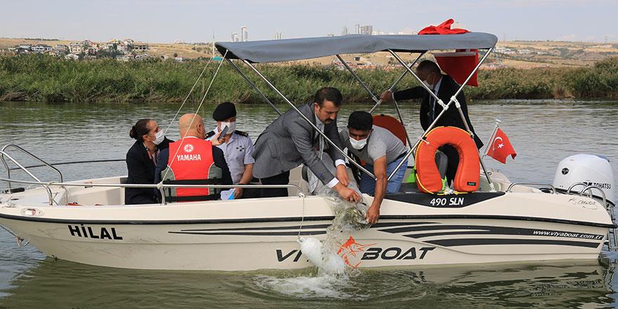 Mogan Gölü'nde 100 bin sazan bırakıldı
