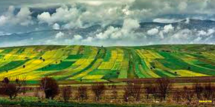 DSİ 69 adet tarım arazisini satışa çıkardı