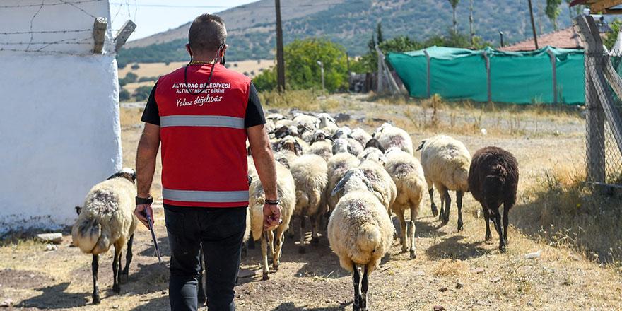 Altındağ Belediyesi sel mağdurlarının yanında