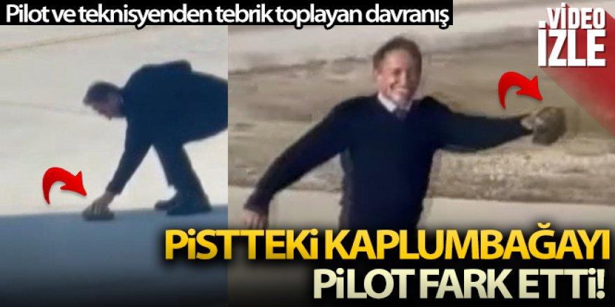 Pistte kaplumbağa gören duyarlı pilot