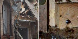 Böcek ilacı sıkıp evlerini patlattılar!