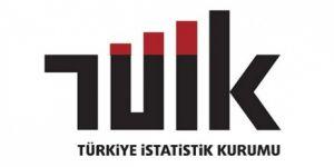 TÜİK, hanehalkı yurtiçi turizm istatistiklerini açıkladı haberi