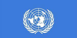 Robot uzmanları BM'ye uyardı: 'Engelleyin'