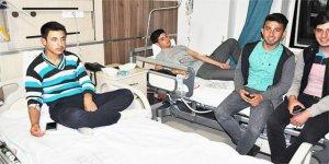 116 öğrenci hastanelik oldu