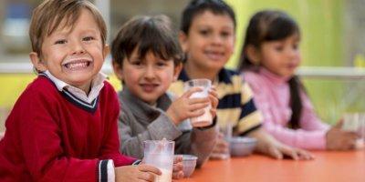 Okul Çocuğuna Yumurta ve Süt