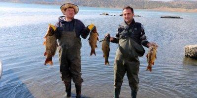 Avrupa'ya balık ihracatı deniz olmayan ilimizden!