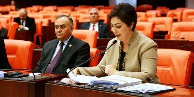 Nevin Taşlıçay: Türk kadınını hak ettiği konuma taşıyacağız