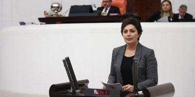 Nevin Taşlıçay: Devletler bütçeleri ile kaimdir