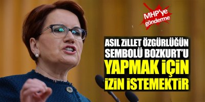Meral Akşener'den MHP'ye Bozkurt göndermesi!