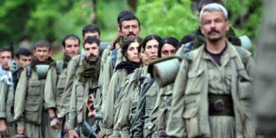 İşte PKK'nın gerçek yüzü