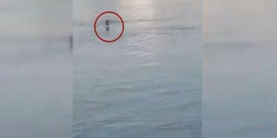 Kız çocuğu boğulurken diğerleri resim çektirdi