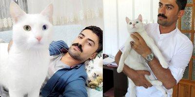 Eşinin hatırası kedi için 190 bin lira harcadı