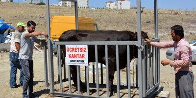 Türkiye'nin en nitelikli kurban satış alanı Keçiören'de