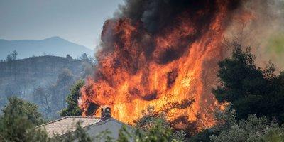 Yunanistan'daki yangın devam ediyor