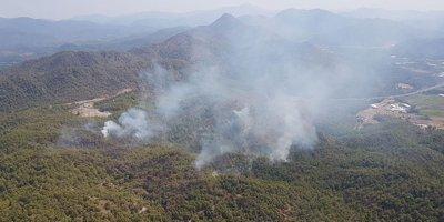 Yangında 60 hektar kül oldu