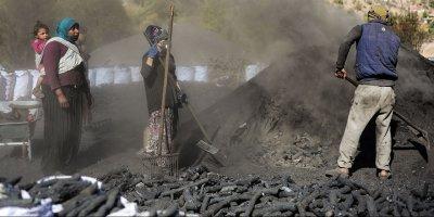 Mangal kömürü üreticilerinin son mesai