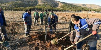 Ekoköy'de fidanlar toprakla buluştu
