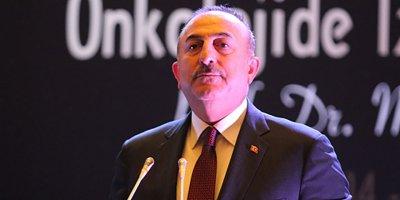 Çavuşoğlu'ndan AP'de Yunan provokasyonuna sert tepki