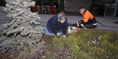 Sakarya Caddesi çiçek açıyor