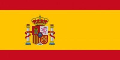 İspanya'da korona virüsü vak'ası 13 bin 716'ya yükseldi