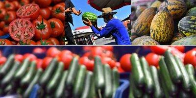 Ankara'da en çok domates ve karpuz tüketildi