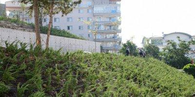 Ankara'nın en yeşil ilçesi olacak
