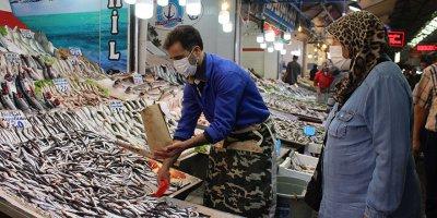 Başkent halinde balık bolluğu
