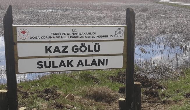 kaz-golu-1.png