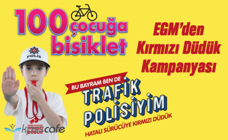 trafik-denetimleri-(3).png