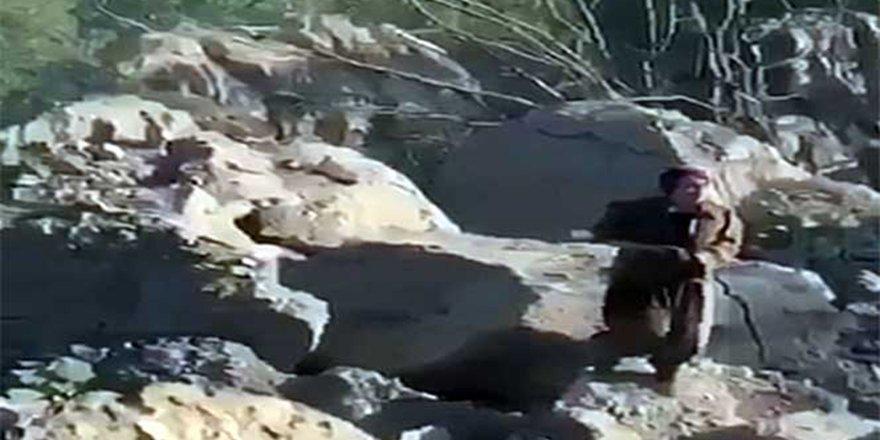Bitlis şehidinin katili terörist böyle yakalandı