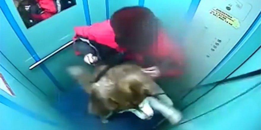 Rusya'da sahibinin dikkatsizliği az daha bir köpeği canından ediyordu.