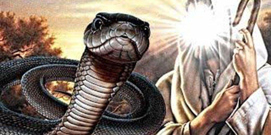 Hz İsa ve siyah yılan kıssası - iyiliğin önemi - dini hikayeler