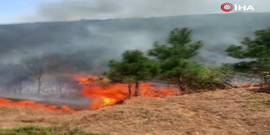 Aydos ormanlarında yangın büyüyor