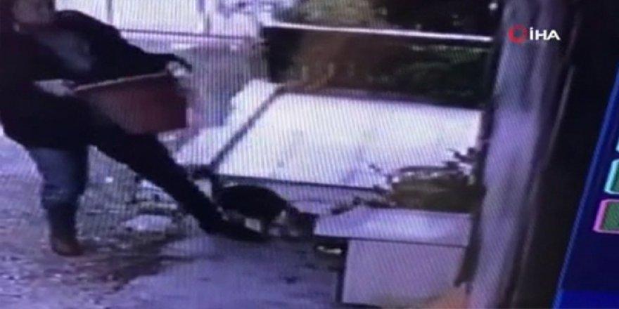 Bu da oldu: Bir kadın saksı çalarken kameraya yakalandı